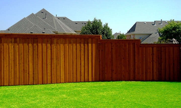How to choose wood for a fence?